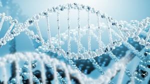 Βιολογία Γενικής Παιδείας
